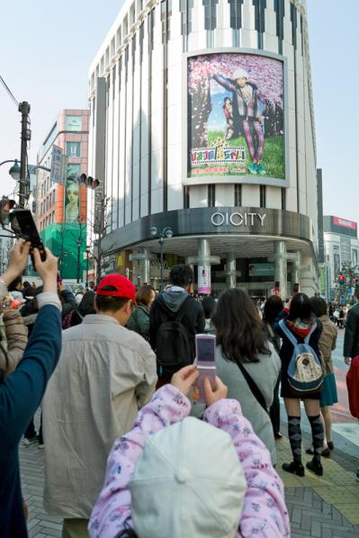 これが渋谷の春