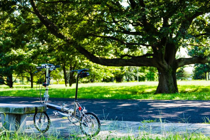 たまに様子を見るのは自転車も人間も同じ