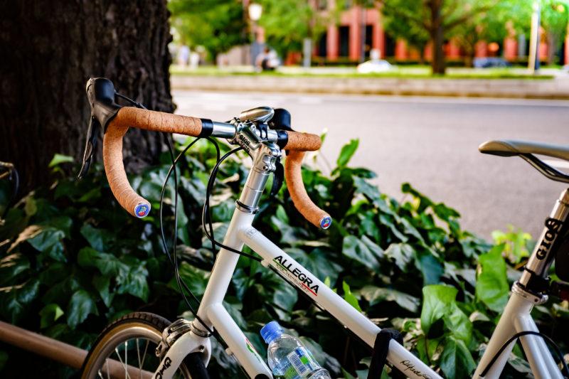 奇麗な自転車を見かける