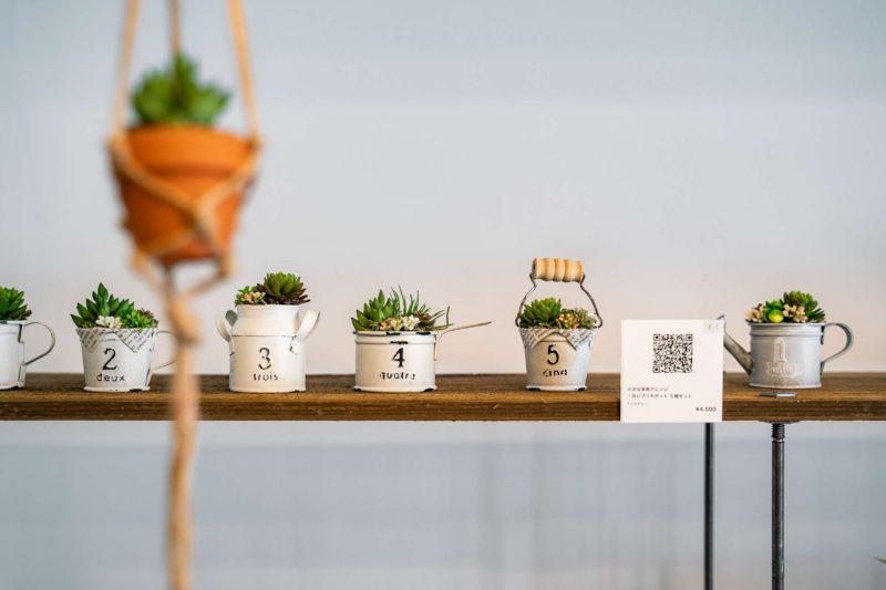 植物系のちょっとしたイベントを見にいく(2)