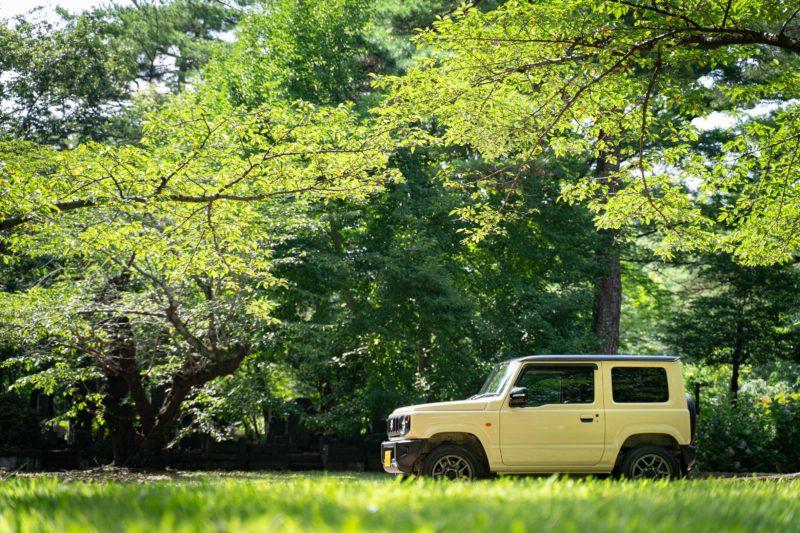 夏と言えそうな東京の緑にジムニー